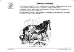 Training Your Dog Information Page
